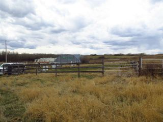 Photo 4: 4635 54 Street: Rural Flagstaff County House for sale : MLS®# E4195134