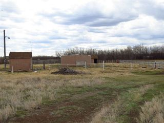 Photo 5: 4635 54 Street: Rural Flagstaff County House for sale : MLS®# E4195134