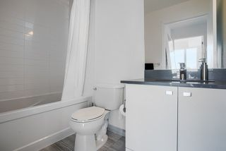 Photo 6: 1507 51 East Liberty Street in Toronto: Niagara Condo for lease (Toronto C01)  : MLS®# C4828415