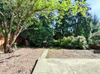 Photo 31: 5436 KEITH Street in Burnaby: South Slope House for sale (Burnaby South)  : MLS®# R2495533