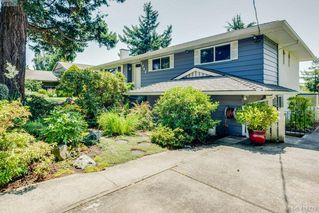 Photo 1: 1703 Kenmore Rd in VICTORIA: SE Gordon Head Single Family Detached for sale (Saanich East)  : MLS®# 822594