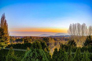 Photo 19: 16756 16A Avenue in Surrey: Pacific Douglas House for sale (South Surrey White Rock)  : MLS®# R2419753