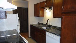 Photo 5:  in Edmonton: Zone 02 Condo for sale : MLS®# E4187589