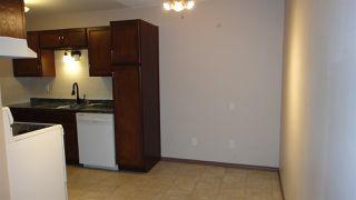 Photo 3:  in Edmonton: Zone 02 Condo for sale : MLS®# E4187589