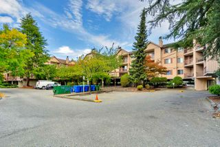 """Photo 12: 242 8500 ACKROYD Road in Richmond: Brighouse Condo for sale in """"WEST HAMPTON COURT"""" : MLS®# R2497507"""