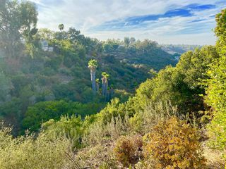 Photo 39: TALMADGE House for sale : 3 bedrooms : 4742 Lorraine Drive in San Diego