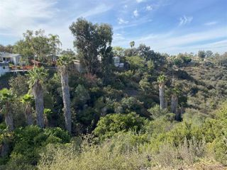 Photo 36: TALMADGE House for sale : 3 bedrooms : 4742 Lorraine Drive in San Diego
