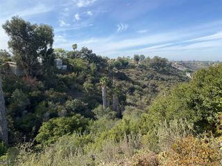 Photo 32: TALMADGE House for sale : 3 bedrooms : 4742 Lorraine Drive in San Diego