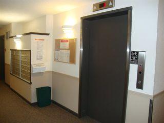 Photo 11: 306 11620 9A Avenue in Edmonton: Zone 16 Condo for sale : MLS®# E4182924