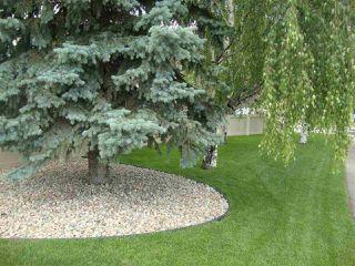 Photo 6: 306 11620 9A Avenue in Edmonton: Zone 16 Condo for sale : MLS®# E4182924