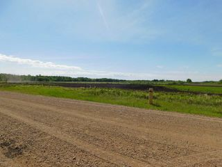 Photo 6: RR221 & TWP 584: Rural Thorhild County Rural Land/Vacant Lot for sale : MLS®# E4186915