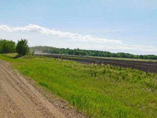 Photo 7: RR221 & TWP 584: Rural Thorhild County Rural Land/Vacant Lot for sale : MLS®# E4186915