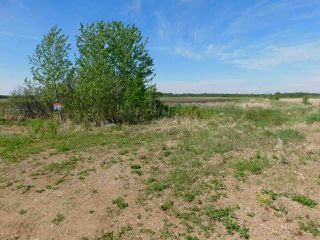 Photo 10: RR221 & TWP 584: Rural Thorhild County Rural Land/Vacant Lot for sale : MLS®# E4186915