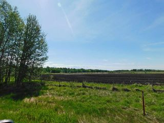Photo 8: RR221 & TWP 584: Rural Thorhild County Rural Land/Vacant Lot for sale : MLS®# E4186915