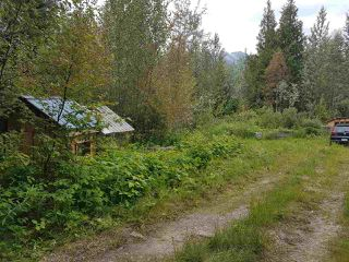 Photo 26: 7615 READ Road in Valemount: Valemount - Rural West House for sale (Robson Valley (Zone 81))  : MLS®# R2440556