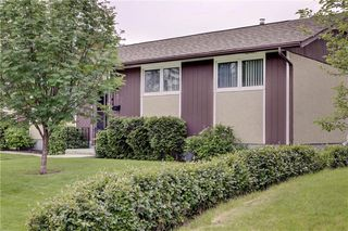 Photo 44: 532 MARIPOSA Drive NE in Calgary: Mayland Heights Detached for sale : MLS®# C4304992
