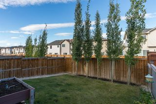 Photo 31: 34 PANORA View NW in Calgary: Panorama Hills Detached for sale : MLS®# A1027248