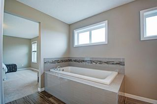 Photo 29: 362 Reunion Green NW: Airdrie Detached for sale : MLS®# A1047148