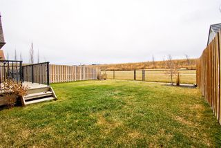 Photo 46: 362 Reunion Green NW: Airdrie Detached for sale : MLS®# A1047148