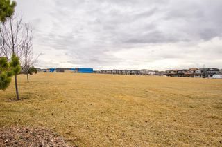 Photo 48: 362 Reunion Green NW: Airdrie Detached for sale : MLS®# A1047148