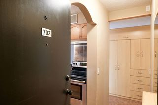 Photo 4: 703 2909 17 Avenue SW in Calgary: Killarney/Glengarry Apartment for sale : MLS®# A1056244