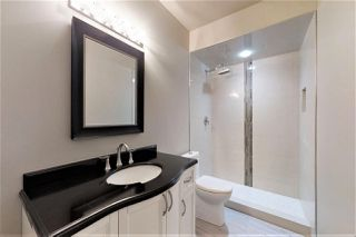 Photo 23: 20752 90 Avenue in Edmonton: Zone 58 House for sale : MLS®# E4170854