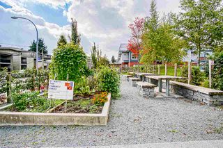 """Photo 18: 102 119 AGNES Street in New Westminster: Downtown NW Condo for sale in """"Park West Plaza"""" : MLS®# R2411485"""
