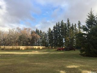 Photo 17: Bexson Acreage in Buffalo: Residential for sale (Buffalo Rm No. 409)  : MLS®# SK808912