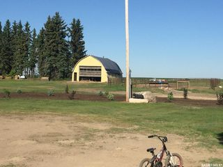 Photo 10: Bexson Acreage in Buffalo: Residential for sale (Buffalo Rm No. 409)  : MLS®# SK808912
