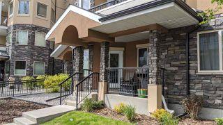 Photo 14: 120 8730 82 Avenue in Edmonton: Zone 18 Condo for sale : MLS®# E4204327