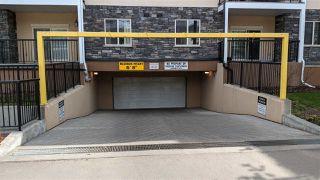 Photo 13: 120 8730 82 Avenue in Edmonton: Zone 18 Condo for sale : MLS®# E4204327