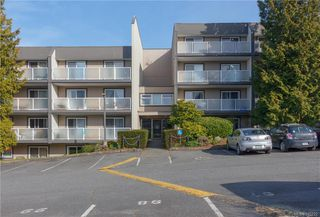 Photo 12: 201 3252 Glasgow Ave in Saanich: SE Quadra Condo for sale (Saanich East)  : MLS®# 845222