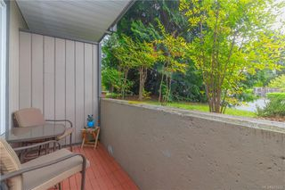 Photo 9: 201 3252 Glasgow Ave in Saanich: SE Quadra Condo for sale (Saanich East)  : MLS®# 845222
