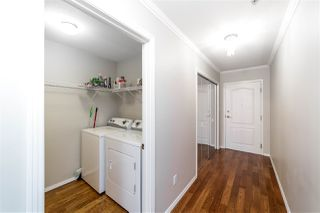 Photo 3: 305 8215 84 Avenue in Edmonton: Zone 18 Condo for sale : MLS®# E4211070