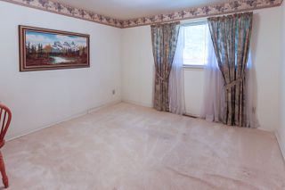 Photo 6:  in Edmonton: Zone 23 House for sale : MLS®# E4211958