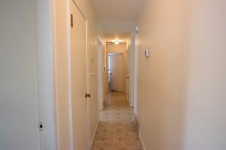 Photo 9:  in Edmonton: Zone 23 House for sale : MLS®# E4211958