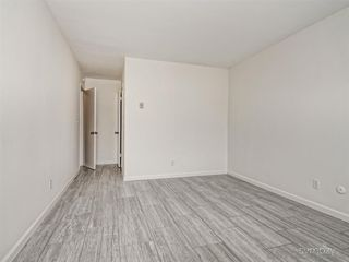 Photo 7: PACIFIC BEACH Apartment for rent : 2 bedrooms : 962 LORING STREET #1D