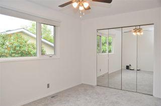 Photo 8: 7319 81 Avenue in Edmonton: Zone 17 House Half Duplex for sale : MLS®# E4178381
