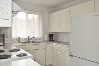 Photo 6: 7319 81 Avenue in Edmonton: Zone 17 House Half Duplex for sale : MLS®# E4178381