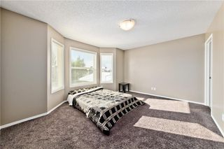 Photo 16: 45 CRANBERRY Way SE in Calgary: Cranston Detached for sale : MLS®# C4282701