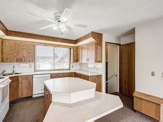 Photo 11: 6920 15 Avenue SE in Calgary: Applewood Park Detached for sale : MLS®# A1031724