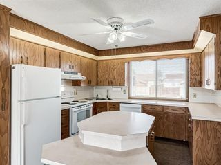 Photo 12: 6920 15 Avenue SE in Calgary: Applewood Park Detached for sale : MLS®# A1031724