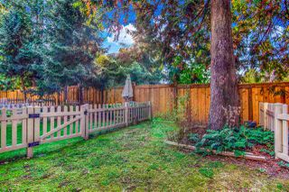 """Photo 23: 78 12778 66 Avenue in Surrey: West Newton Townhouse for sale in """"Hathaway Village"""" : MLS®# R2505730"""