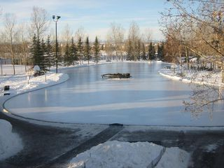 Photo 50: 398 Mountain Park Drive SE in Calgary: McKenzie Lake Detached for sale : MLS®# A1054034