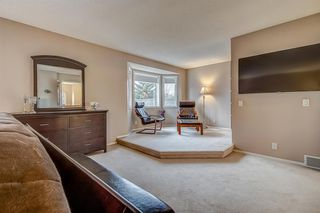 Photo 26: 398 Mountain Park Drive SE in Calgary: McKenzie Lake Detached for sale : MLS®# A1054034