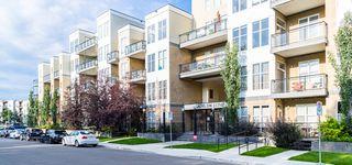 Photo 8: 312 10531 117 Street in Edmonton: Zone 08 Condo for sale : MLS®# E4169752