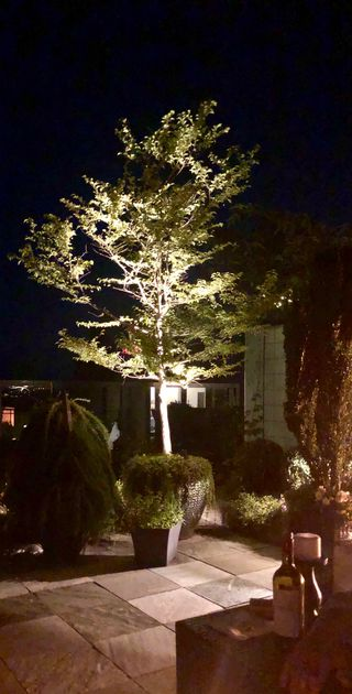 """Photo 36: 501 6063 IONA Drive in Vancouver: University VW Condo for sale in """"COAST"""" (Vancouver West)  : MLS®# R2402966"""