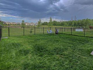 Photo 47: 648 171 Street in Edmonton: Zone 56 House for sale : MLS®# E4205587
