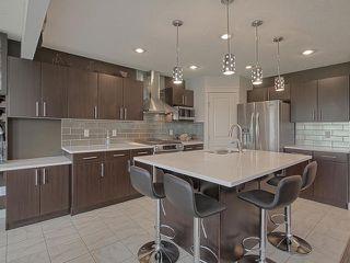 Photo 10: 648 171 Street in Edmonton: Zone 56 House for sale : MLS®# E4205587