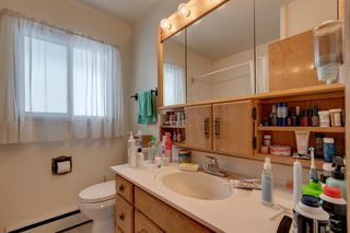 Photo 22: 33 Moncton Road NE in Calgary: Winston Heights/Mountview Detached for sale : MLS®# A1044576